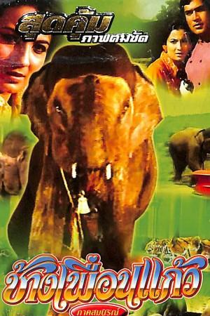 ช้างเพื่อนแก้ว