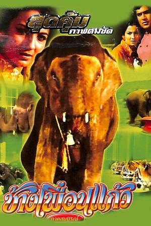 ช้างเพื่อนแก้ว Haathi mere Saathi