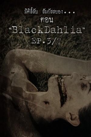 Black dahlia  [EP.3/7]