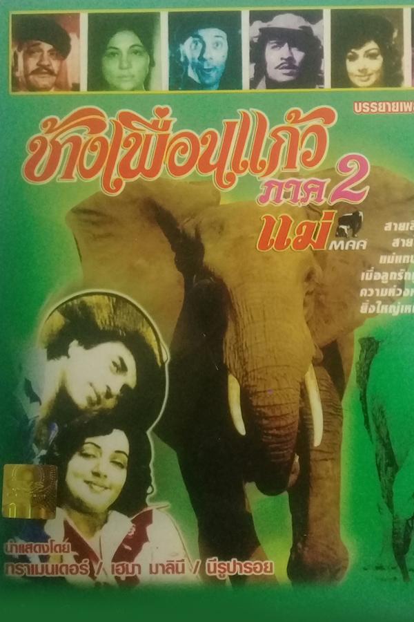 ช้างเพื่อนแก้ว 2 ตอน แม่ MAA EP.1