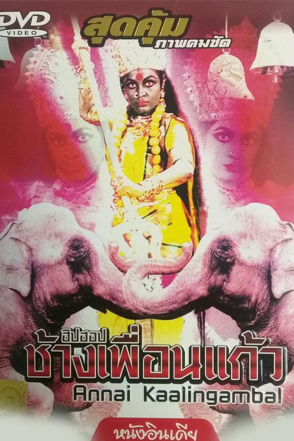 ฮิปฮอปช้างเพื่อนแก้ว ANNAI KAALINGAMBAL EP.4